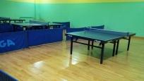 Sala za stoni tenis (6)
